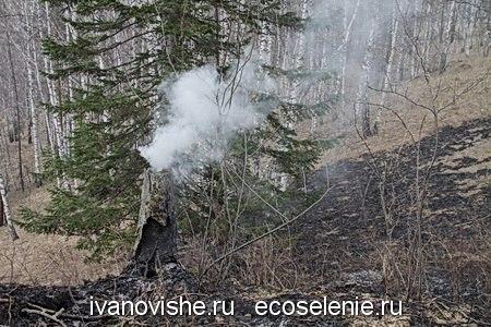 Дневники экопоселенской жизни. Весна. День 3